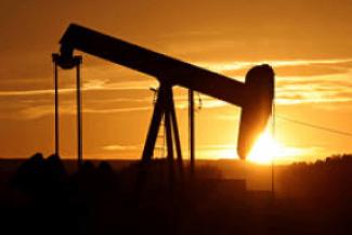 tanahoy.com oil_investment