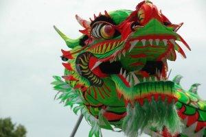 tanahoy.com Chinese dragon2