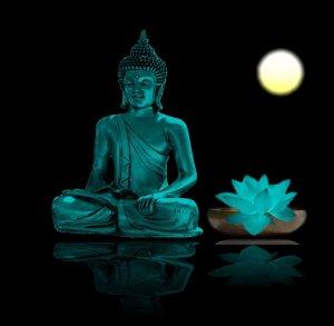 tanahoy.com buddha 2.jpg