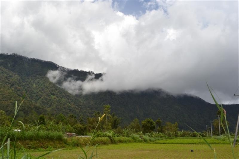 Tanah dijual di Bedugul view danau dan gunung - TJBE016