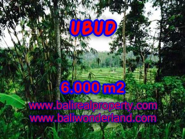 Tanah dijual murah di Ubud Bali
