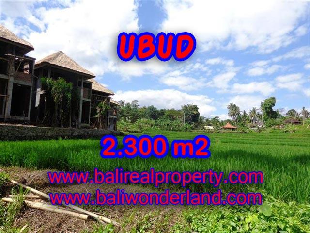Tanah di Ubud dijual 2.300 m2 view sawah dan sungai di Dekat Ubud Center