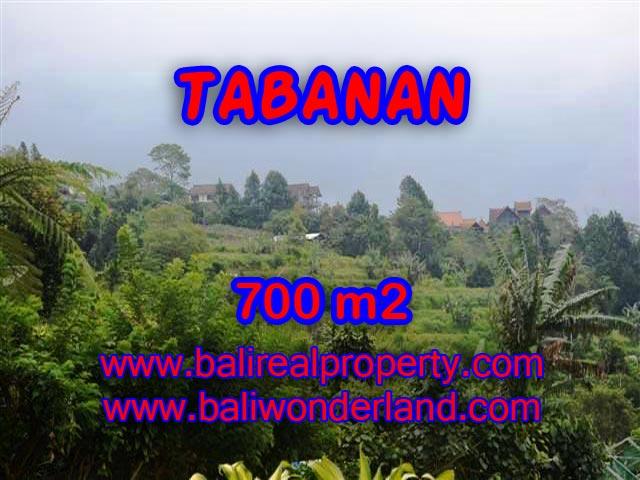 INVESTASI PROPERTI DI BALI - DIJUAL TANAH DI TABANAN BALI CUMA RP 1.950.000 / M2