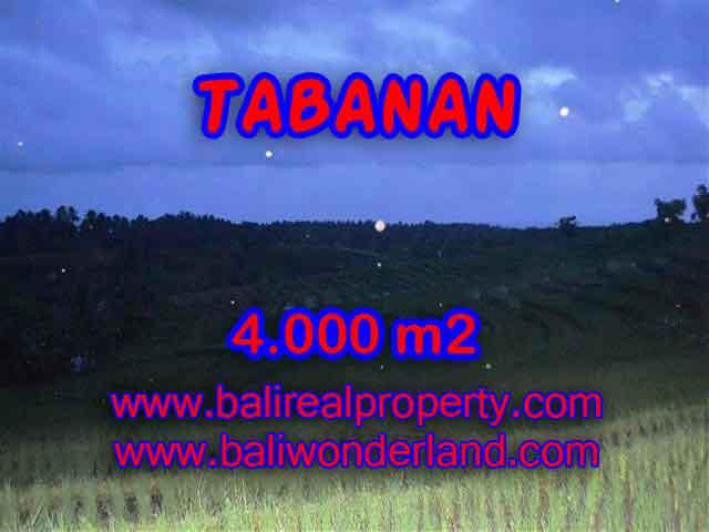 TANAH DIJUAL DI TABANAN MURAH RP 360.000 / M2 - TJTB096