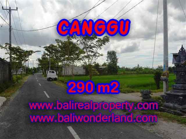 JUAL TANAH DI CANGGU MURAH TJCG141