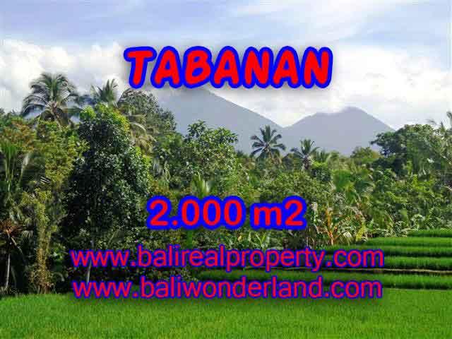 INVESTASI PROPERTI DI BALI - TANAH DIJUAL DI TABANAN CUMA RP 500.000 / M2