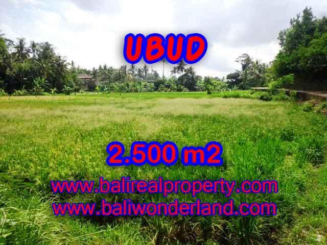 DIJUAL TANAH DI UBUD RP 2.850.000 / M2 - TJUB418 - INVESTASI PROPERTY DI BALI
