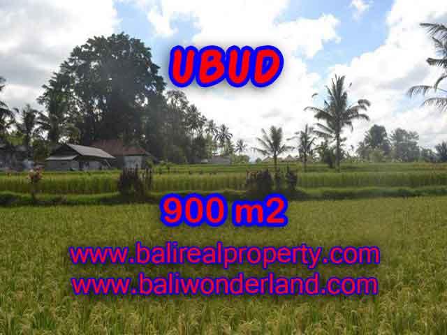 MURAH ! DIJUAL TANAH DI UBUD BALI TJUB412
