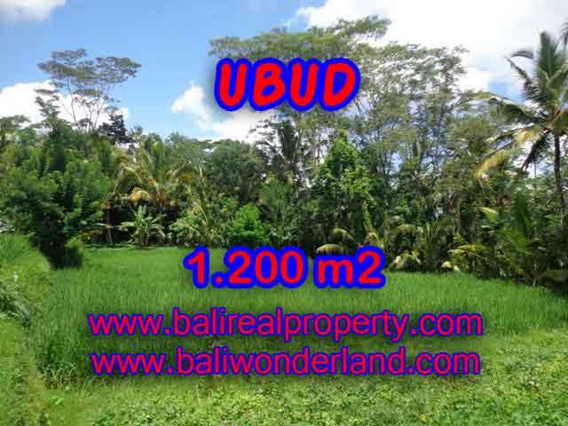 JUAL TANAH DI UBUD RP 1.200.000 / M2 - TJUB404