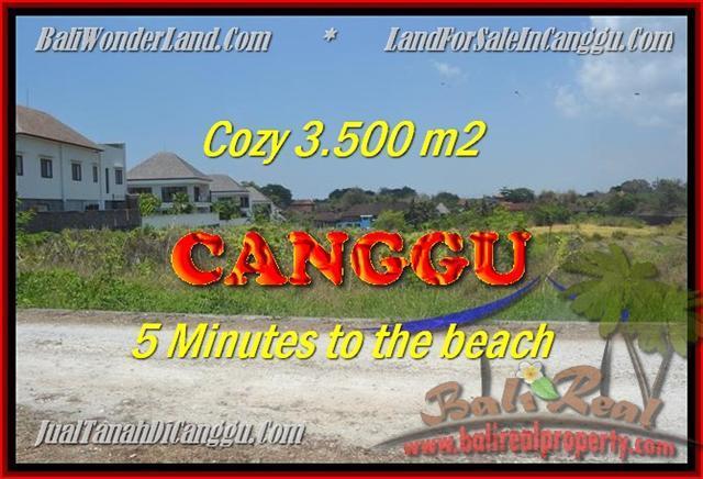 JUAL MURAH TANAH di CANGGU BALI 3.500 m2  View sawah lingkungan villa
