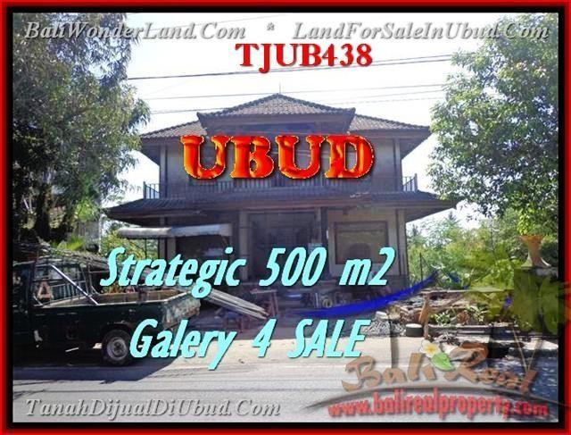 TANAH MURAH di UBUD DIJUAL Untuk INVESTASI TJUB438