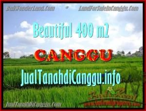 JUAL MURAH TANAH di CANGGU 400 m2  View Sawah, lingkungan villa