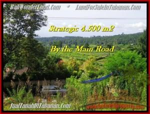 TANAH JUAL MURAH  TABANAN 4,500 m2  view Gunung, sawah, hutan dan kota denpasar