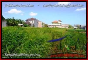 JUAL MURAH TANAH di CANGGU BALI 7,7 Are View Sawah