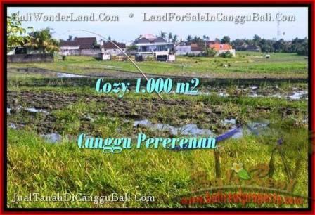 TANAH MURAH  di CANGGU BALI DIJUAL 1,000 m2  View sawah link villa