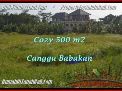 TANAH MURAH DIJUAL di CANGGU Untuk INVESTASI TJCG179
