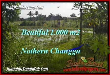 JUAL TANAH di CANGGU BALI 1,000 m2 di Canggu Batu Bolong