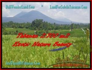 TANAH MURAH di TABANAN BALI 2.700 m2 di Tabanan Penebel