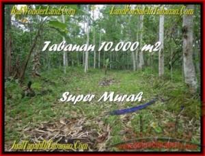 DIJUAL TANAH di TABANAN BALI Untuk INVESTASI TJTB177