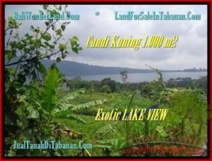 TANAH di TABANAN BALI DIJUAL MURAH 10 Are View Danau Beratan dan Gunung