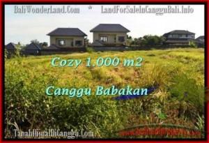 TANAH MURAH di CANGGU JUAL 1,000 m2 View sawah link villa