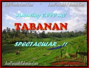 TANAH JUAL MURAH  TABANAN 2.000 m2  View sawah gunung dan laut