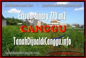 TANAH DIJUAL di CANGGU BALI 770 m2 di Canggu Kerobokan