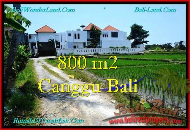 TANAH DIJUAL di CANGGU BALI 800 m2  View sawah, lingkungan villa