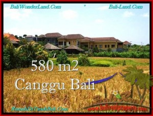TANAH MURAH di CANGGU JUAL 580 m2  View sawah, lingkungan villa