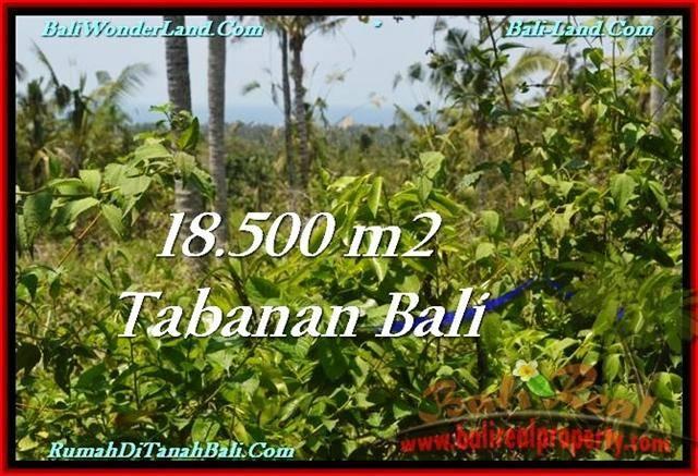 JUAL TANAH MURAH di TABANAN Untuk INVESTASI TJTB232