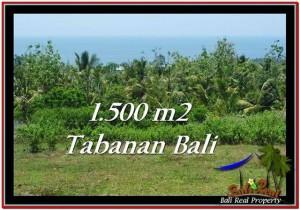 TANAH MURAH JUAL di TABANAN BALI 15 Are View Laut dan Kebun
