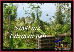 TANAH di TABANAN BALI DIJUAL MURAH 8,600 m2  view laut, hutan lindung, kebun