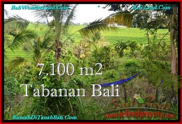 TANAH di TABANAN BALI DIJUAL MURAH 7,100 m2  View sawah dan Kebun