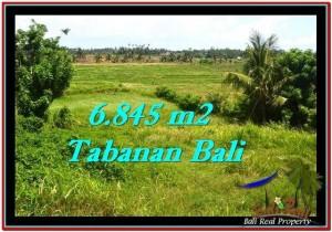 TANAH di TABANAN BALI DIJUAL MURAH 6,845 m2  View sawah dan laut