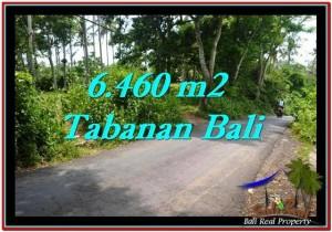 TANAH di TABANAN BALI DIJUAL MURAH 6,460 m2  View kebun dan laut