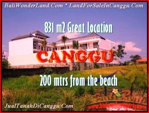 JUAL TANAH MURAH di CANGGU BALI 8,31 Are lingkungan villa