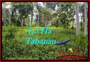 TANAH di TABANAN BALI DIJUAL MURAH 15,550 m2  View kebun dan sungai