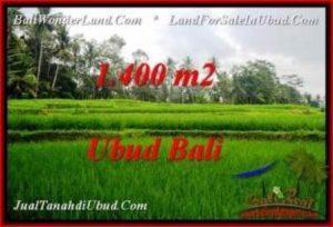 JUAL TANAH di UBUD BALI 14 Are di Ubud Pejeng