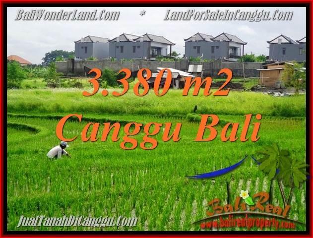 TANAH MURAH di CANGGU BALI 3,380 m2  View sawah, lingkungan villa