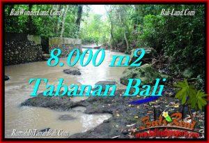 JUAL MURAH TANAH di TABANAN BALI 80 Are View kebun dan sungai