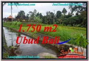 TANAH di UBUD BALI DIJUAL MURAH 715 m2 di Ubud Tampak Siring