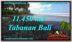 TANAH JUAL MURAH  TABANAN 11,450 m2  View Laut, Gunung dan sawah