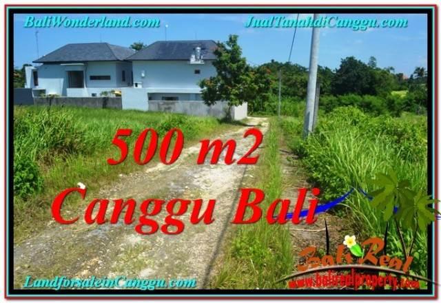TANAH di CANGGU BALI DIJUAL 500 m2 di Canggu Brawa