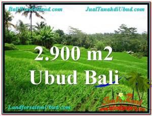 TANAH DIJUAL MURAH di UBUD BALI TJUB564