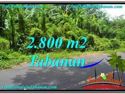 TANAH MURAH JUAL di TABANAN BALI 28 Are View kebun