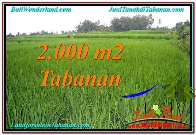 TANAH di TABANAN BALI DIJUAL MURAH 2,000 m2 View Sawah