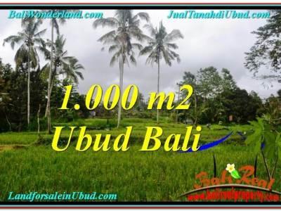 JUAL MURAH TANAH di UBUD TJUB570