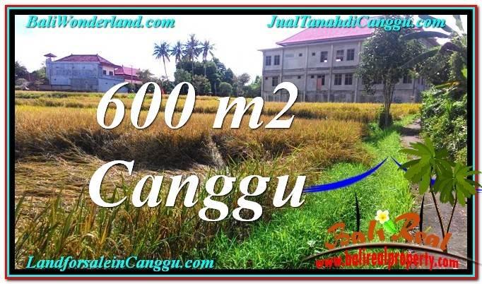 TANAH DIJUAL di CANGGU 6 Are View sawah lingkungan villa