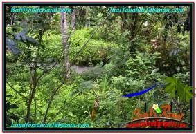 TANAH di TABANAN BALI DIJUAL MURAH Untuk INVESTASI TJTB293