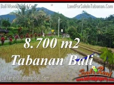 TANAH MURAH DIJUAL di TABANAN BALI Untuk INVESTASI TJTB316